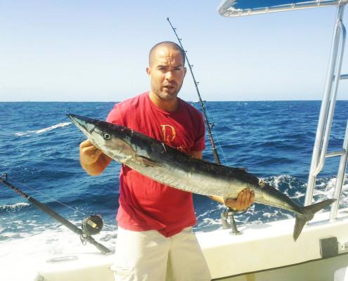 wahoo fishing curacao