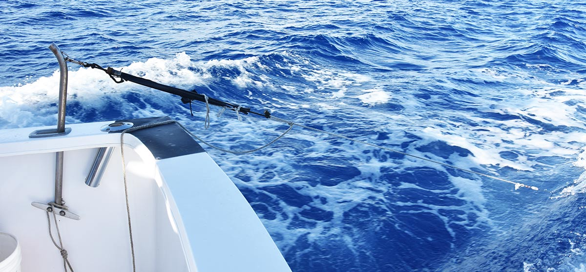 rosario fishing wahoo